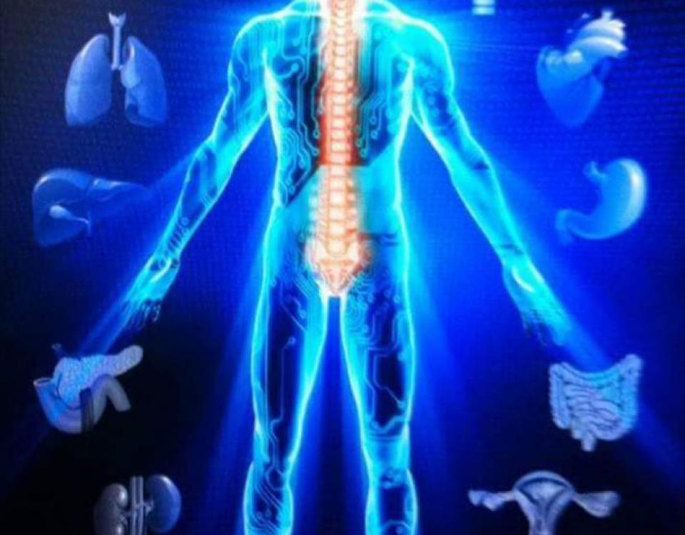 Blog Chamberlain Chiropractic Best chiropractor wellness Center West Chester PA